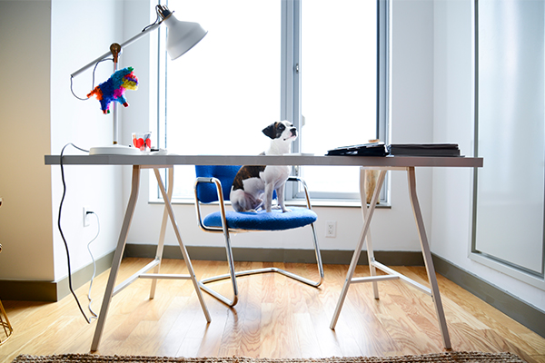 This Ikea table works great as both a workspace and a spot to sit and eat a meal. Plus, it's only $40!